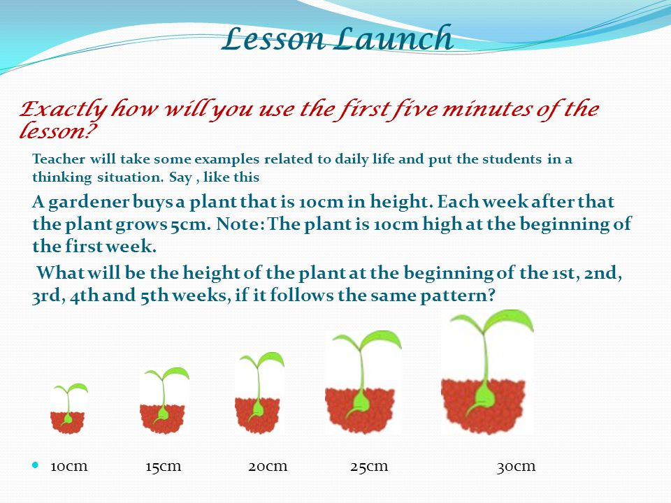 Lesson Launch Exactly how will you use the first five minutes of the lesson? Teacher will take some examples related to daily life and put the student