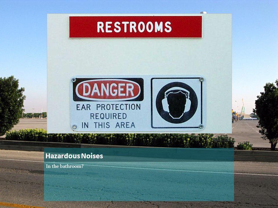 Hazardous Noises In the bathroom?