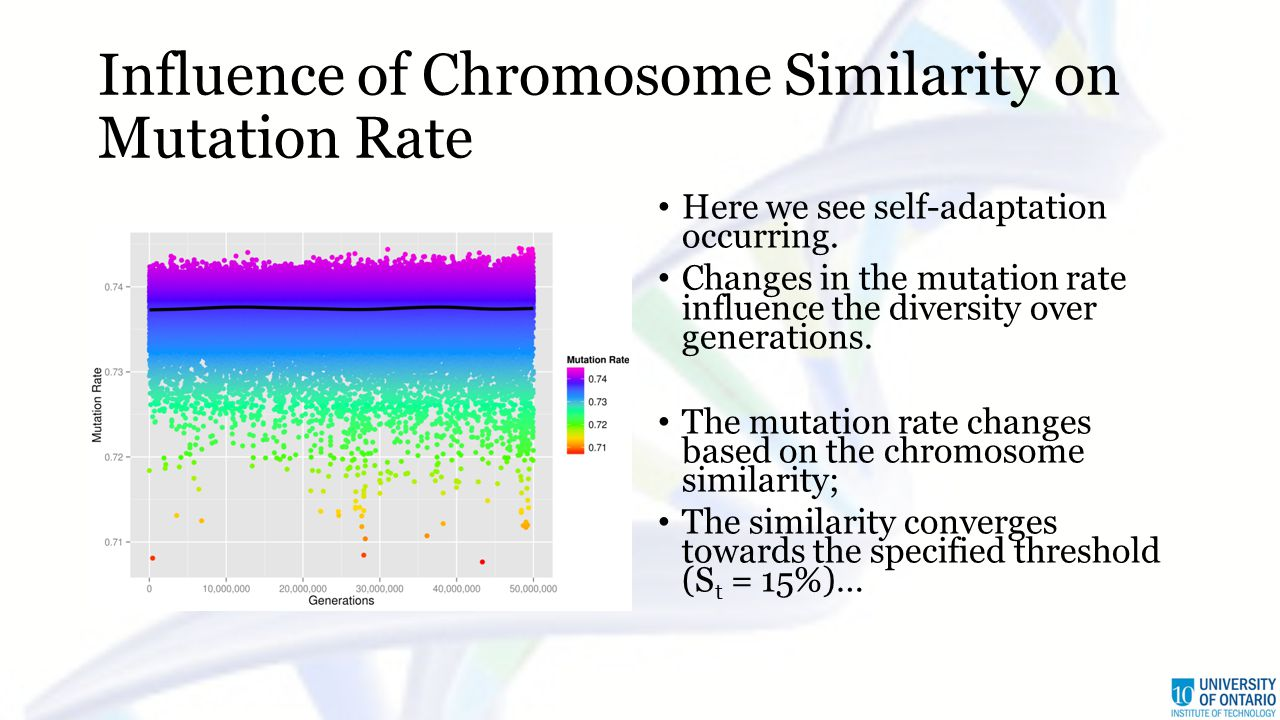Influence of Chromosome Similarity on Mutation Rate Here we see self-adaptation occurring. Changes in the mutation rate influence the diversity over g