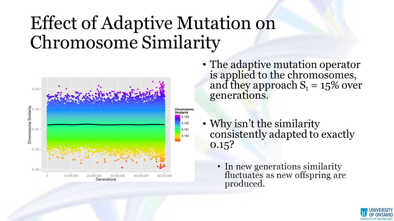 Effect of Adaptive Mutation on Chromosome Similarity The adaptive mutation operator is applied to the chromosomes, and they approach S t = 15% over generations.