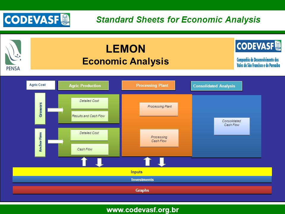10 www.codevasf.org.br Agric Production Processing Plant LEMON Economic Analysis Processing Plant Inputs Investments Graphs Processing Cash Flow Detai