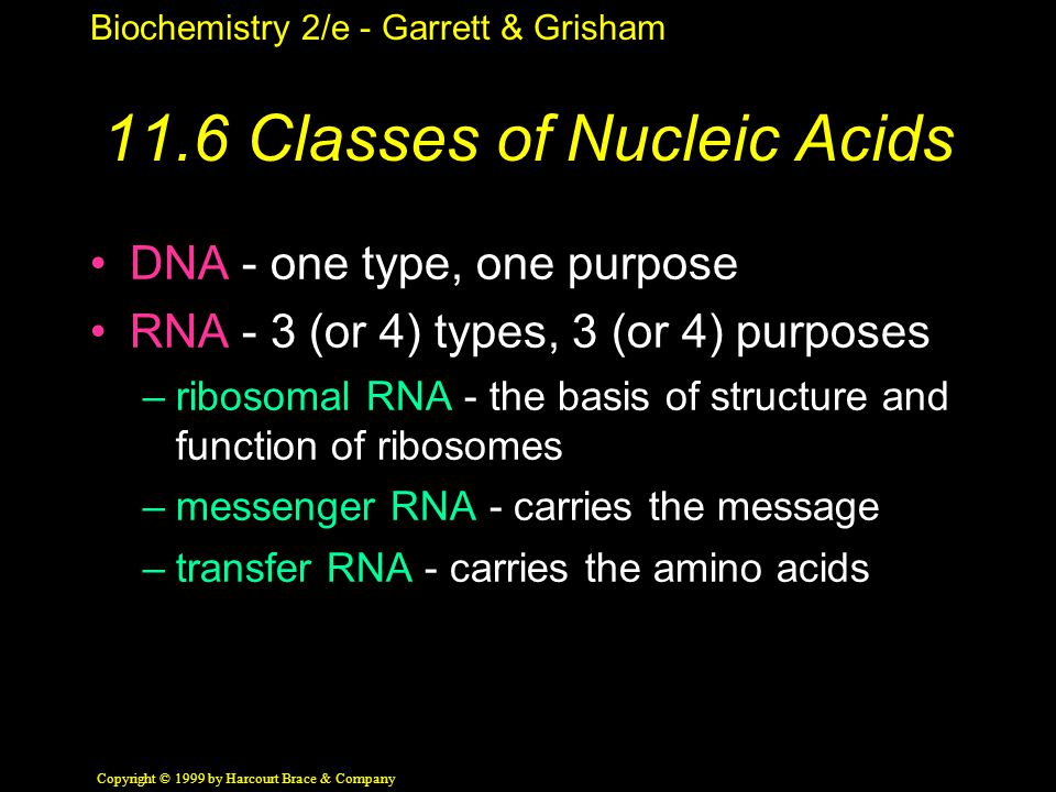 Biochemistry 2/e - Garrett & Grisham Copyright © 1999 by Harcourt Brace & Company 11.6 Classes of Nucleic Acids DNA - one type, one purpose RNA - 3 (or 4) types, 3 (or 4) purposes –ribosomal RNA - the basis of structure and function of ribosomes –messenger RNA - carries the message –transfer RNA - carries the amino acids