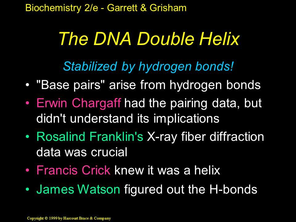 Biochemistry 2/e - Garrett & Grisham Copyright © 1999 by Harcourt Brace & Company The DNA Double Helix Stabilized by hydrogen bonds.