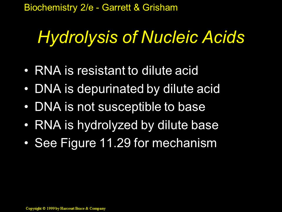 Biochemistry 2/e - Garrett & Grisham Copyright © 1999 by Harcourt Brace & Company Hydrolysis of Nucleic Acids RNA is resistant to dilute acid DNA is d