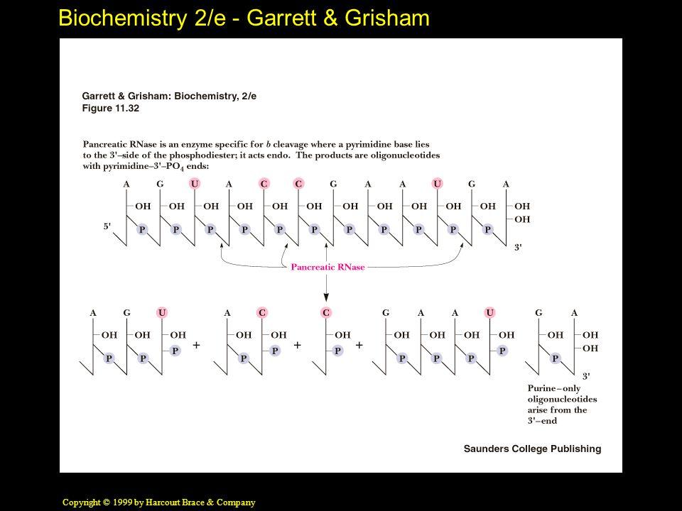 Biochemistry 2/e - Garrett & Grisham Copyright © 1999 by Harcourt Brace & Company