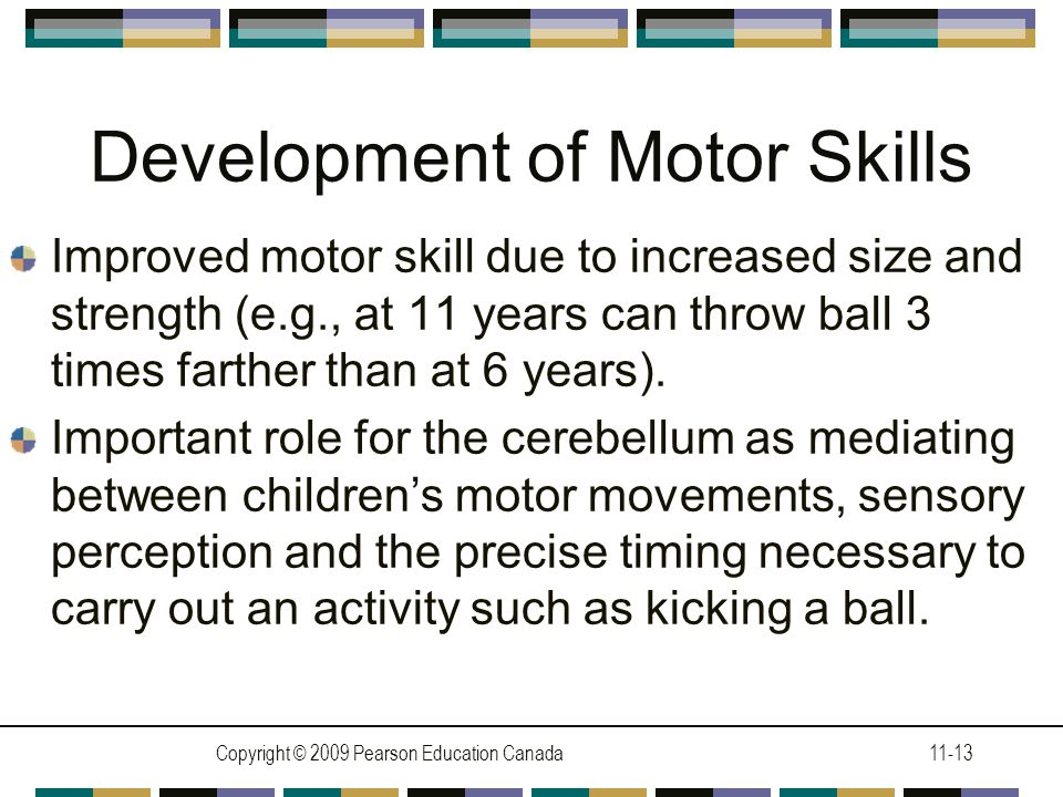 Copyright © 2009 Pearson Education Canada11-13 Development of Motor Skills Improved motor skill due to increased size and strength (e.g., at 11 years can throw ball 3 times farther than at 6 years).