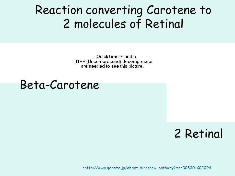 Reaction converting Carotene to 2 molecules of Retinal http://www.genome.jp/dbget-bin/show_pathway map00830+C02094 Beta-Carotene 2 Retinal