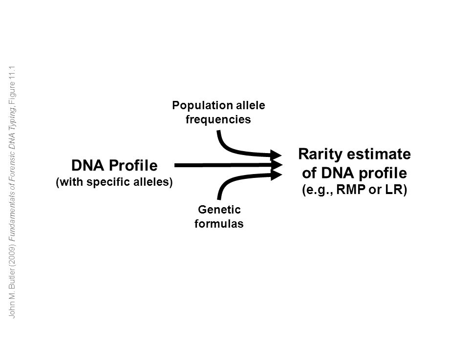 DNA Profile (with specific alleles) Rarity estimate of DNA profile (e.g., RMP or LR) Genetic formulas Population allele frequencies John M.