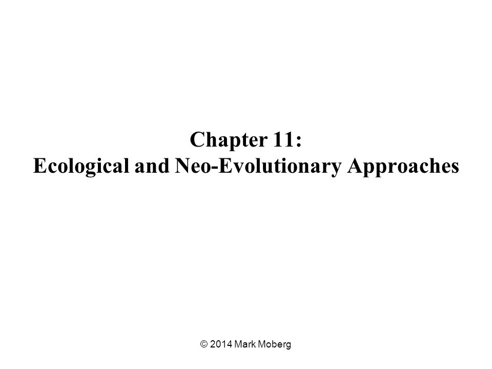 Chapter 11: Ecological and Neo-Evolutionary Approaches © 2014 Mark Moberg