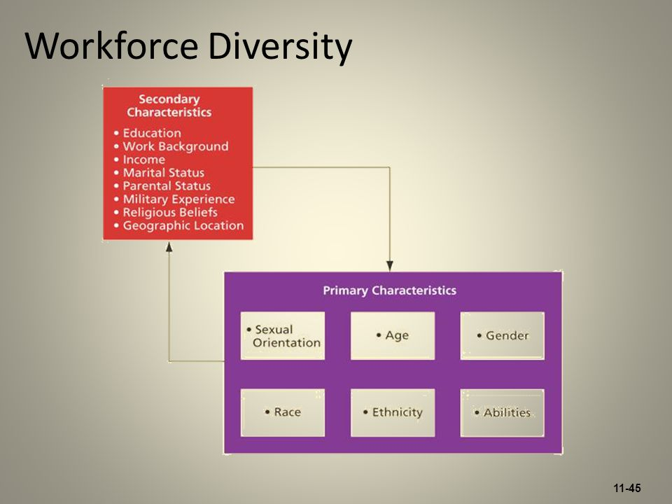 11-45 Workforce Diversity
