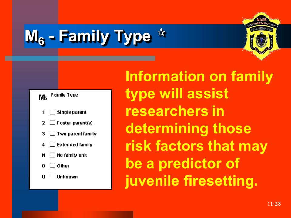 11-28 M 6 - Family Type  M 6 - Family Type  Information on family type will assist researchers in determining those risk factors that may be a predi