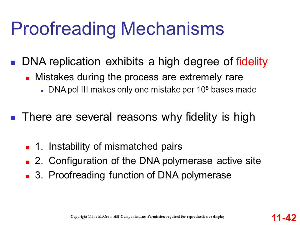 Copyright ©The McGraw-Hill Companies, Inc. Permission required for reproduction or display DNA replication exhibits a high degree of fidelity Mistakes