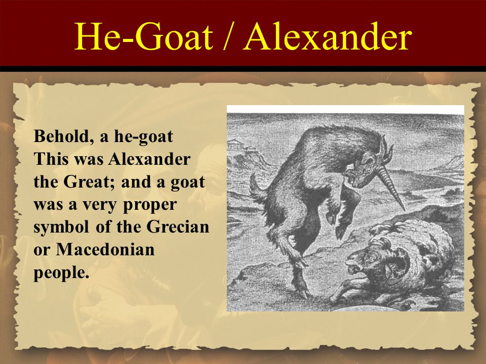 He-Goat / Alexander Behold, a he-goat This was Alexander the Great; and a goat was a very proper symbol of the Grecian or Macedonian people.