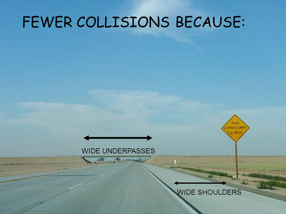 WIDE SHOULDERS WIDE UNDERPASSES FEWER COLLISIONS BECAUSE: