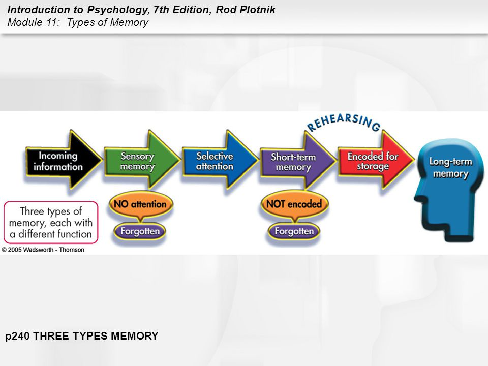 Introduction to Psychology, 7th Edition, Rod Plotnik Module 11: Types of Memory SENSORY MEMORY: RECORDING Iconic memory –form of sensory memory that automatically holds visual information for about a quarter of a second or more; as soon as you shift your attention, the information disappears Echoic memory –form of sensory memory that holds auditory information for 1 to 2 seconds