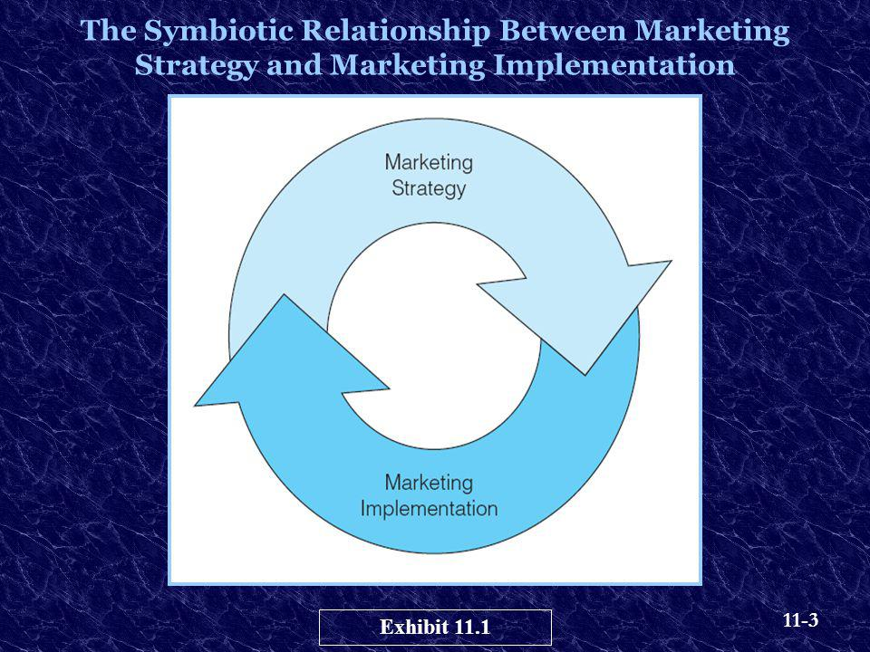 11-3 The Symbiotic Relationship Between Marketing Strategy and Marketing Implementation Exhibit 11.1