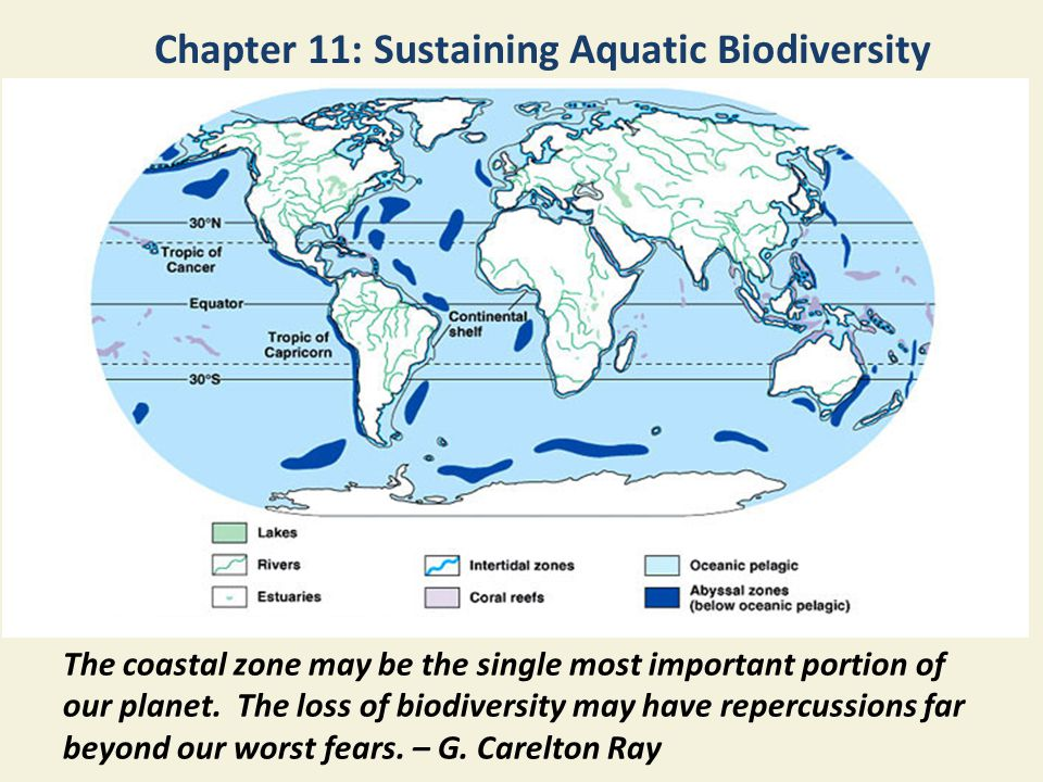 Chapter 11: Sustaining Aquatic Biodiversity The coastal zone may be the single most important portion of our planet. The loss of biodiversity may have