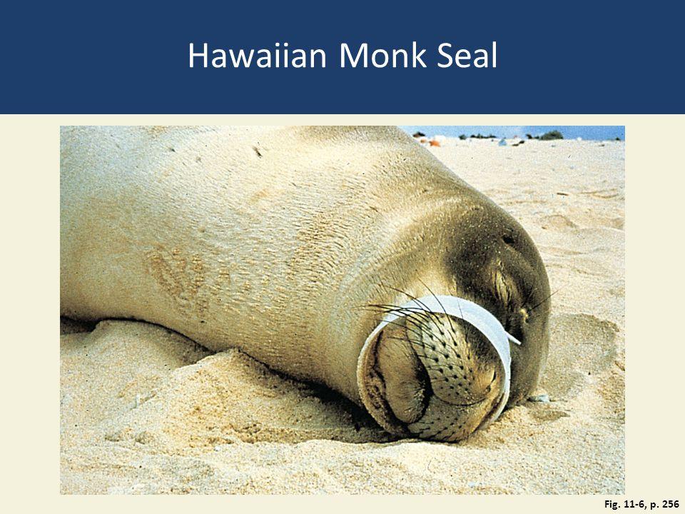 Hawaiian Monk Seal Fig. 11-6, p. 256
