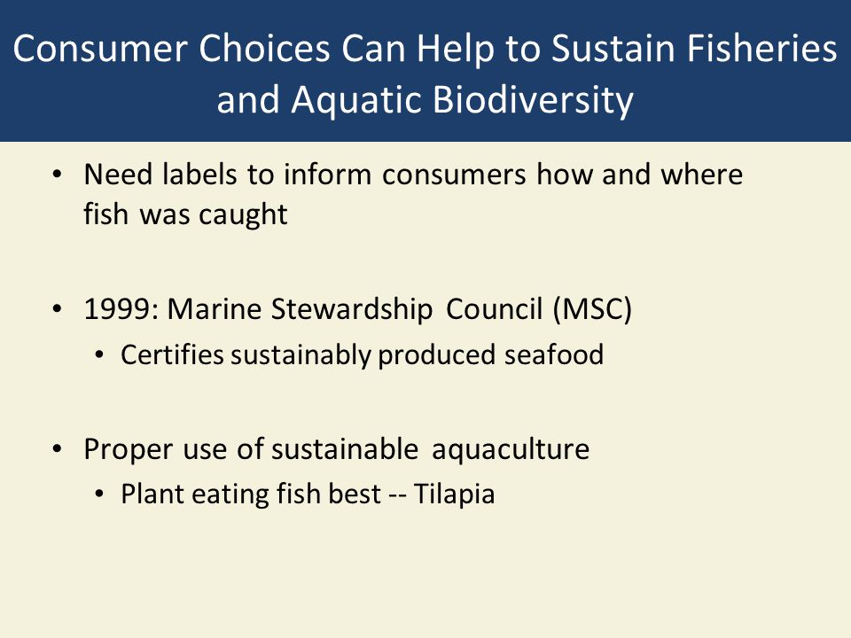 Consumer Choices Can Help to Sustain Fisheries and Aquatic Biodiversity Need labels to inform consumers how and where fish was caught 1999: Marine Ste