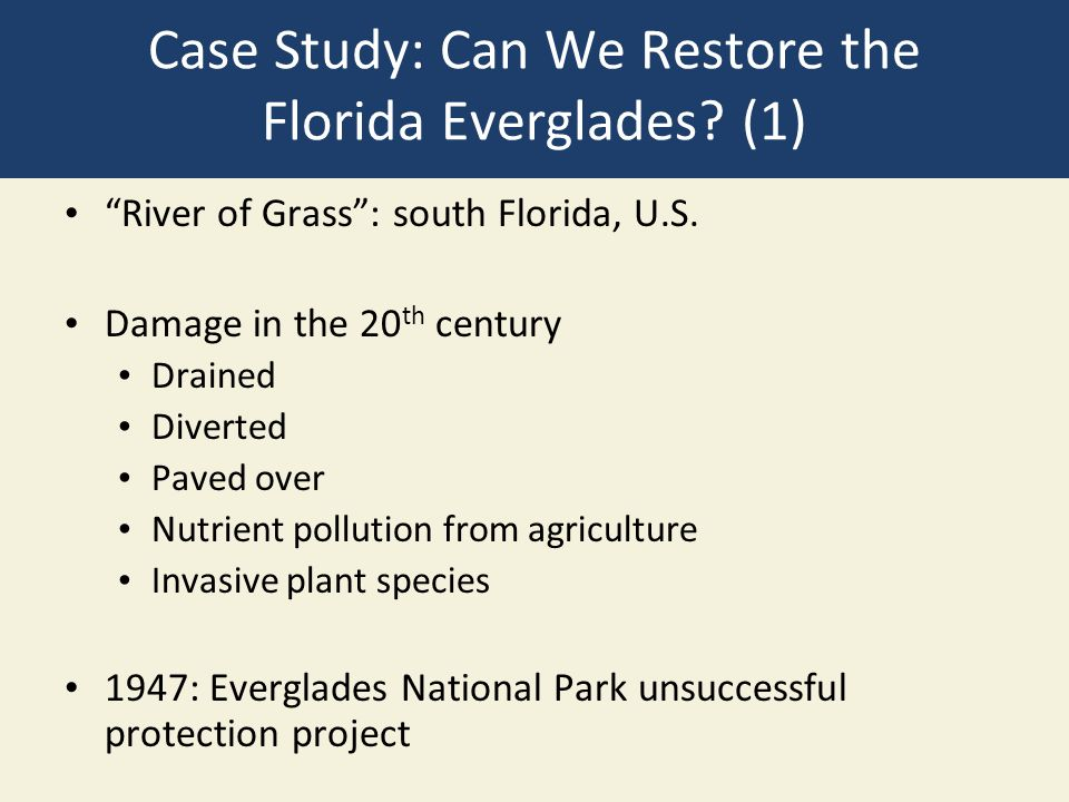 "Case Study: Can We Restore the Florida Everglades? (1) ""River of Grass"": south Florida, U.S. Damage in the 20 th century Drained Diverted Paved over N"
