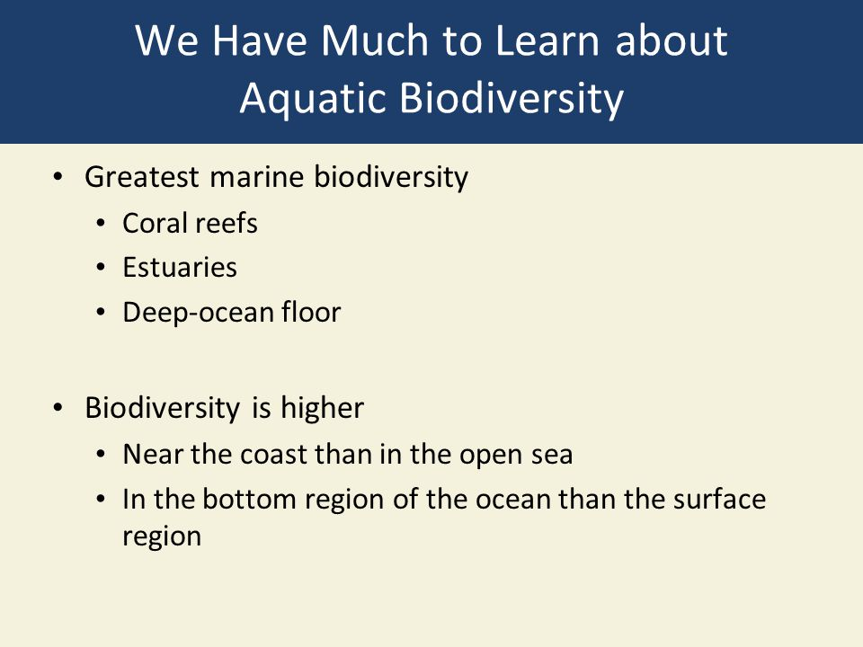 We Have Much to Learn about Aquatic Biodiversity Greatest marine biodiversity Coral reefs Estuaries Deep-ocean floor Biodiversity is higher Near the c