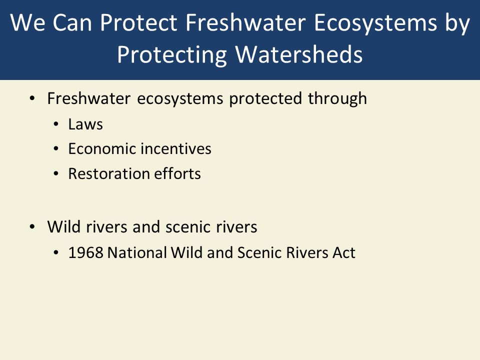 We Can Protect Freshwater Ecosystems by Protecting Watersheds Freshwater ecosystems protected through Laws Economic incentives Restoration efforts Wil