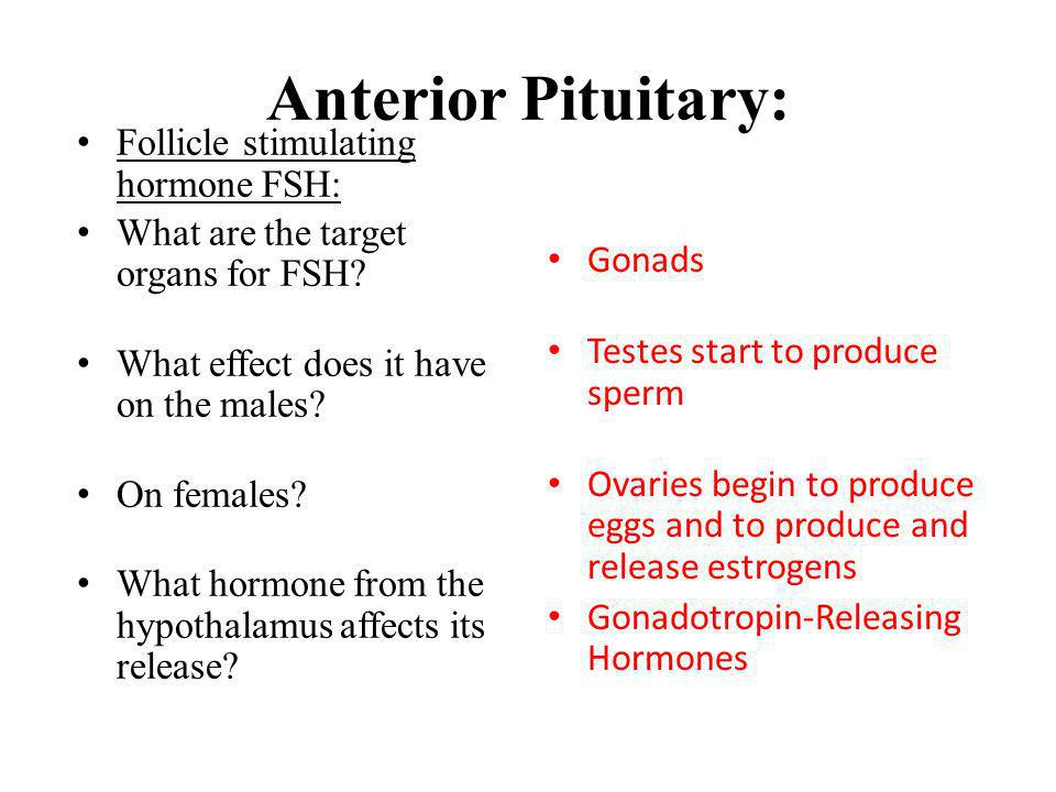 Anterior Pituitary: Follicle stimulating hormone FSH: What are the target organs for FSH? What effect does it have on the males? On females? What horm