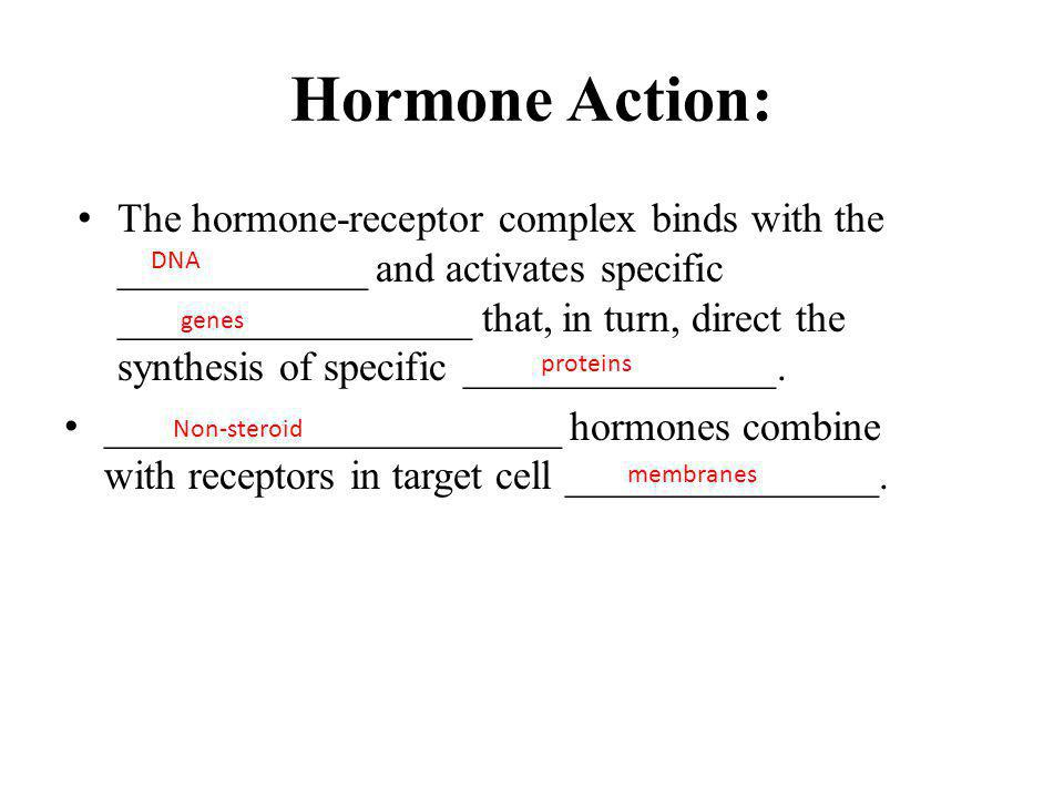 Hormone Action The receptors have a ___________________ site and a/an _____________________ site.