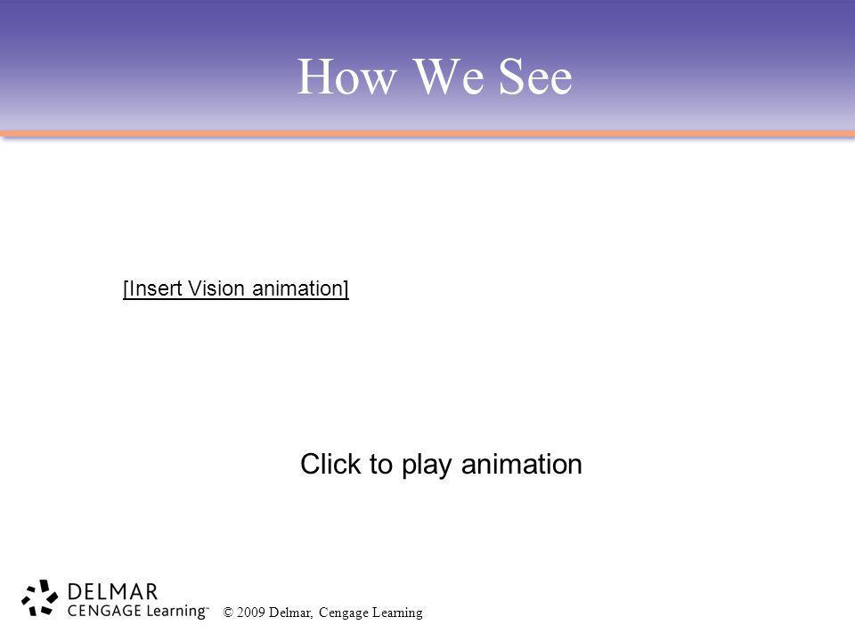 © 2009 Delmar, Cengage Learning How We See Click to play animation [Insert Vision animation]