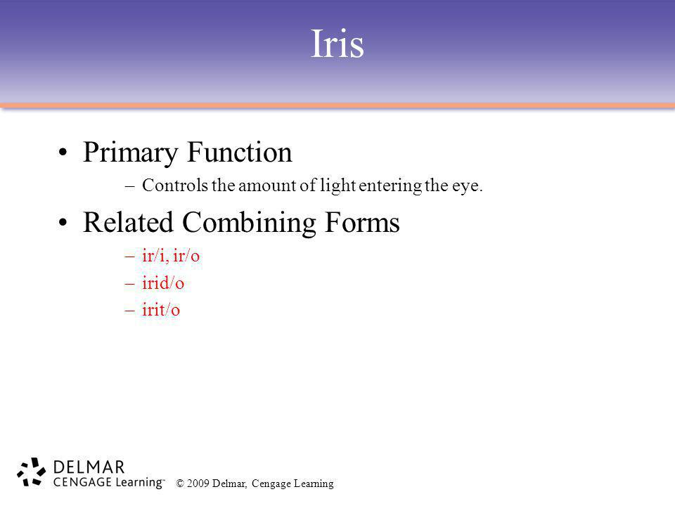 © 2009 Delmar, Cengage Learning Iris Primary Function –Controls the amount of light entering the eye. Related Combining Forms –ir/i, ir/o –irid/o –iri