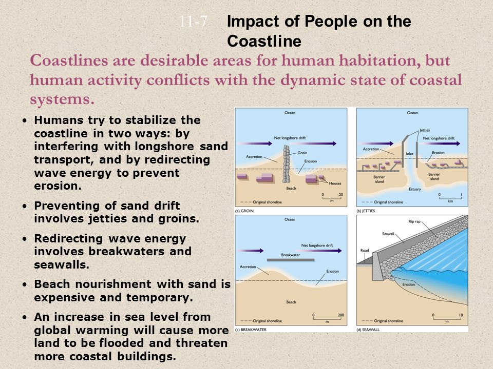 Coastlines are desirable areas for human habitation, but human activity conflicts with the dynamic state of coastal systems. Humans try to stabilize t