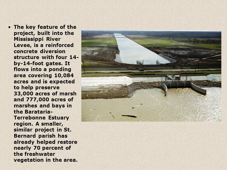 The key feature of the project, built into the Mississippi River Levee, is a reinforced concrete diversion structure with four 14- by-14-foot gates. I