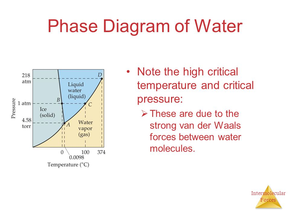 Intermolecular Forces Phase Diagram of Water Note the high critical temperature and critical pressure:  These are due to the strong van der Waals for
