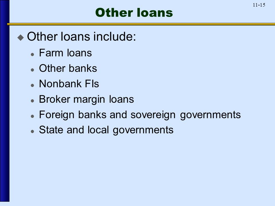 11-15 Other loans  Other loans include: Farm loans Other banks Nonbank FIs Broker margin loans Foreign banks and sovereign governments State and local governments