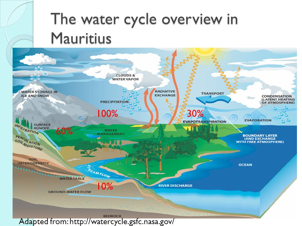 The water cycle overview in Mauritius Adapted from: http://watercycle.gsfc.nasa.gov/ 30%100% 60% 10%