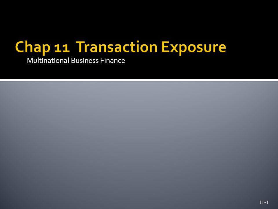 Multinational Business Finance 11-1