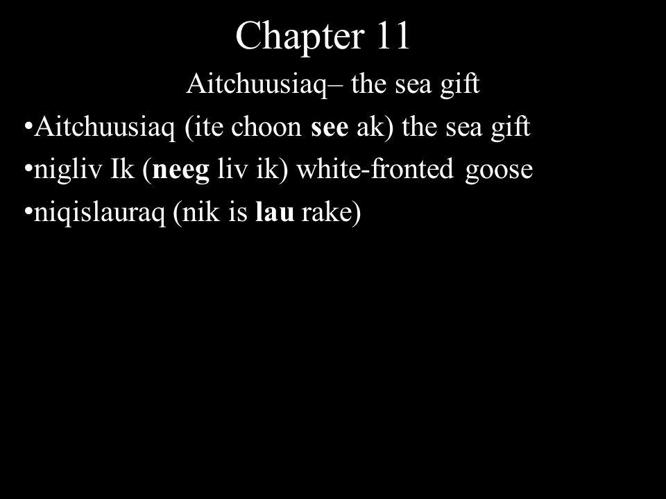 Chapter 11 Aitchuusiaq– the sea gift Aitchuusiaq (ite choon see ak) the sea gift nigliv Ik (neeg liv ik) white-fronted goose niqislauraq (nik is lau rake)