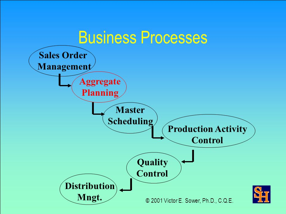 Business Processes Sales Order Management Aggregate Planning Master Scheduling Production Activity Control Quality Control Distribution Mngt.