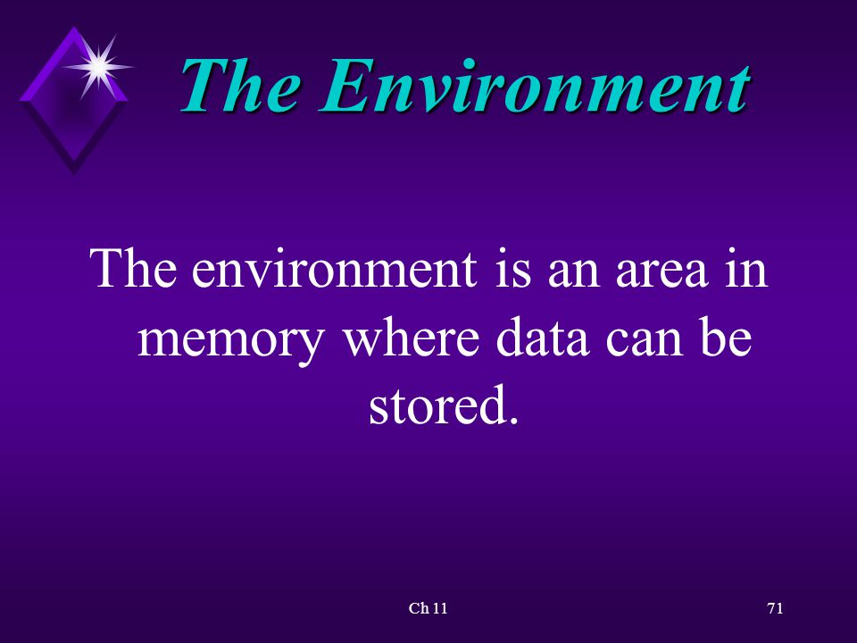 Ch 1171 The Environment The environment is an area in memory where data can be stored.