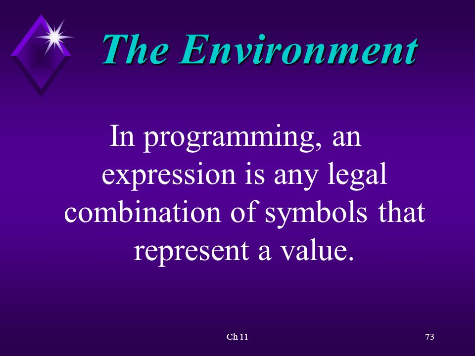Ch 1173 The Environment In programming, an expression is any legal combination of symbols that represent a value.