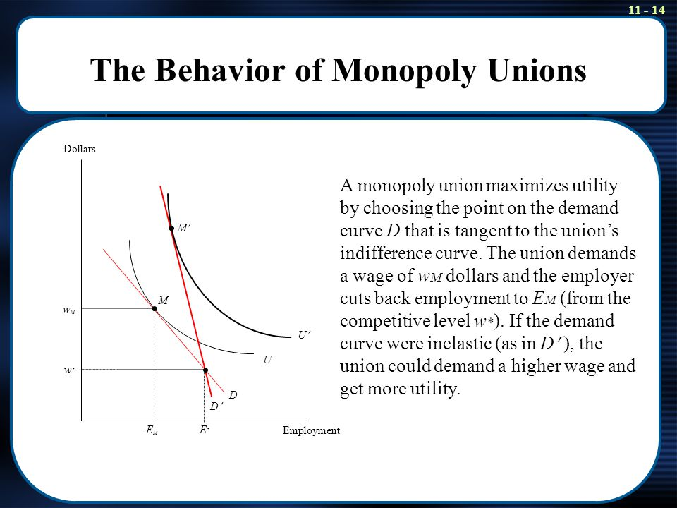 11 - 14 The Behavior of Monopoly Unions Dollars Employment EMEM E*E* w*w* wMwM D U U D M M A monopoly union maximizes utility by choosing the point on
