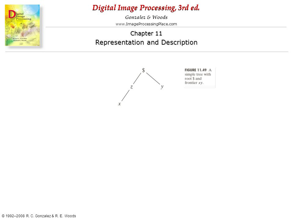 Digital Image Processing, 3rd ed. www.ImageProcessingPlace.com © 1992–2008 R. C. Gonzalez & R. E. Woods Gonzalez & Woods Chapter 11 Representation and