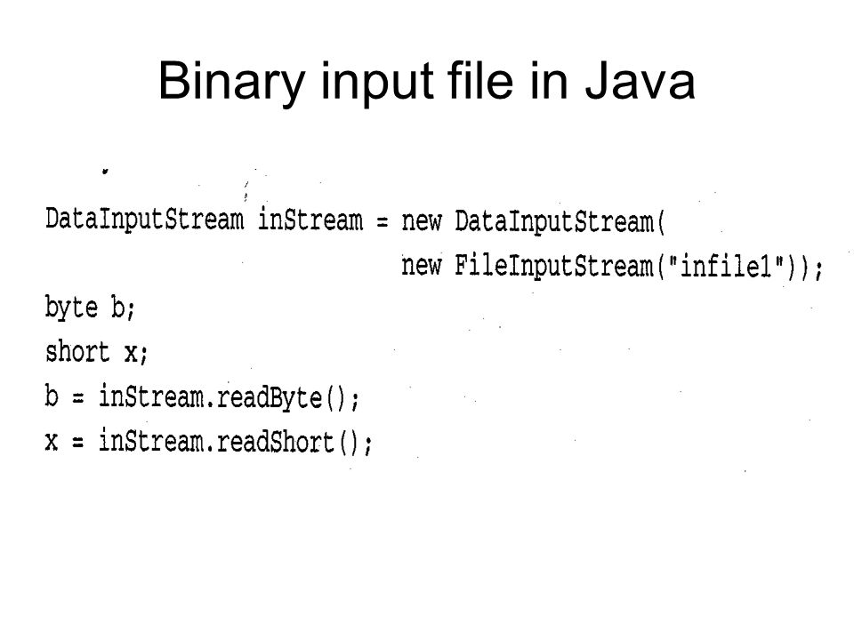 Binary input file in Java