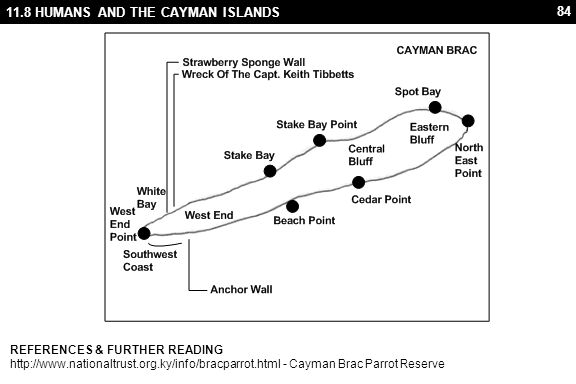 84 11.8 HUMANS AND THE CAYMAN ISLANDS REFERENCES & FURTHER READING http://www.nationaltrust.org.ky/info/bracparrot.html - Cayman Brac Parrot Reserve
