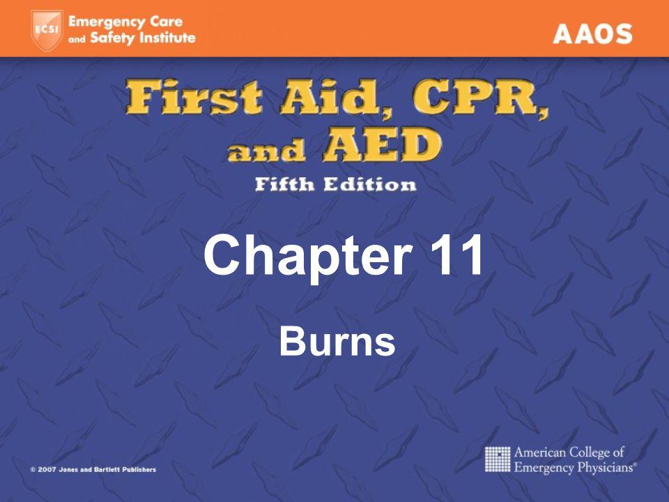 Chapter 11 Burns
