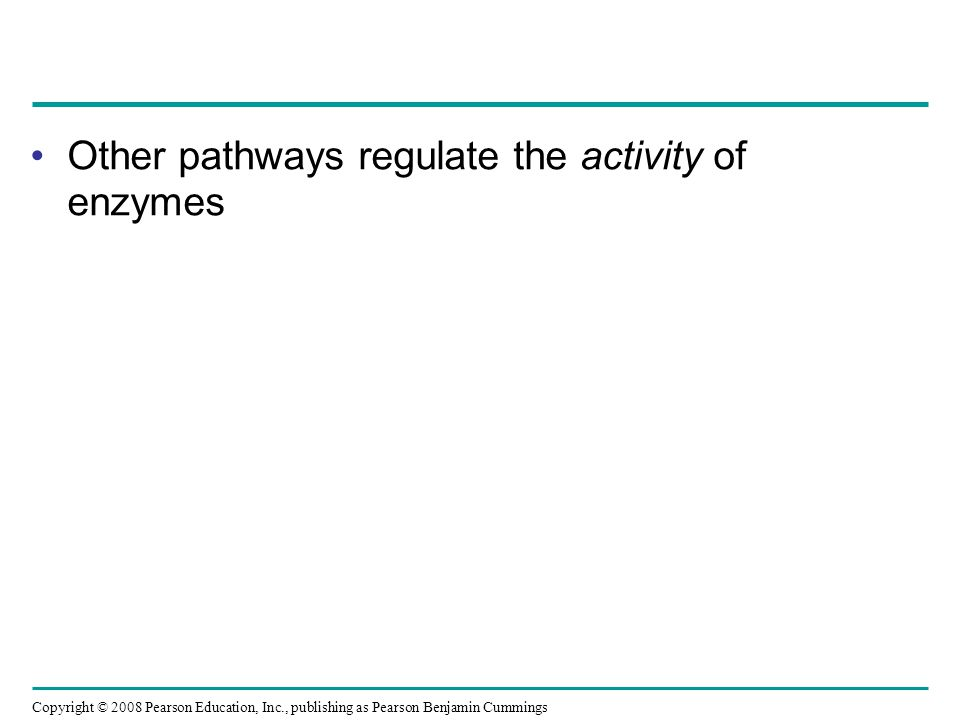 Other pathways regulate the activity of enzymes Copyright © 2008 Pearson Education, Inc., publishing as Pearson Benjamin Cummings
