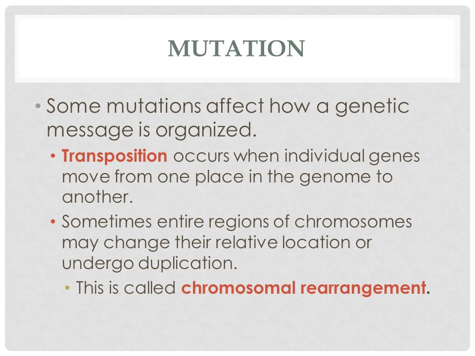 MUTATION Some mutations affect how a genetic message is organized.