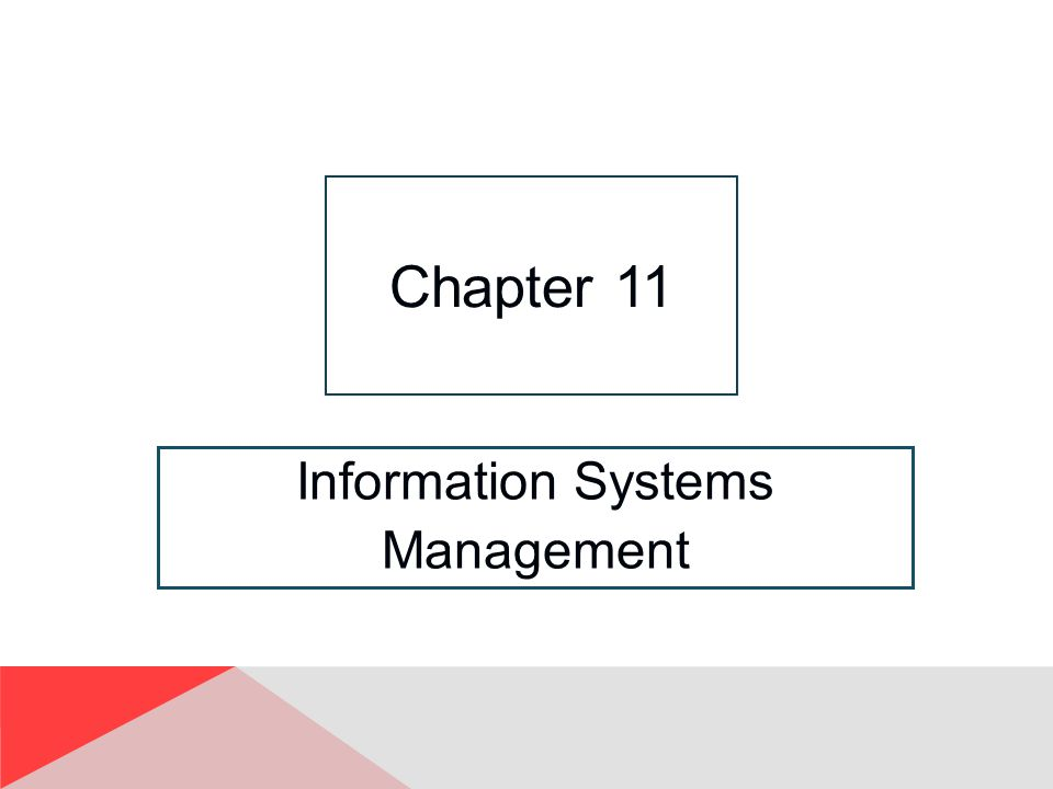 Information Systems Management Chapter 11