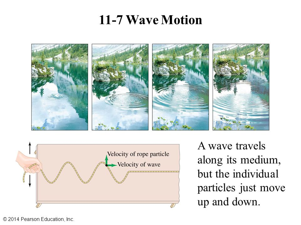 11-7 Wave Motion A wave travels along its medium, but the individual particles just move up and down. © 2014 Pearson Education, Inc.