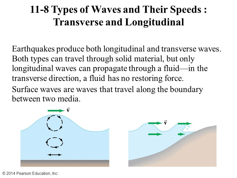 11-8 Types of Waves and Their Speeds : Transverse and Longitudinal Earthquakes produce both longitudinal and transverse waves. Both types can travel t